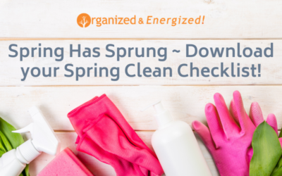 Spring Has Sprung ~ Download your Spring Clean Checklist!