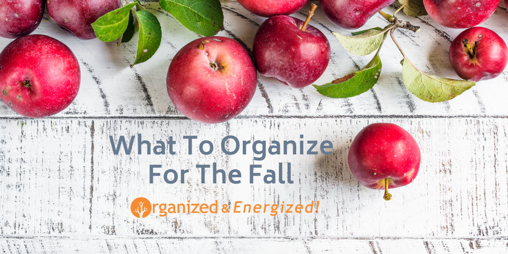 What To Organize For The Fall